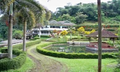 Jual Tanah di Jalan Utama Subang 6 Ha Bonus Villa Megah