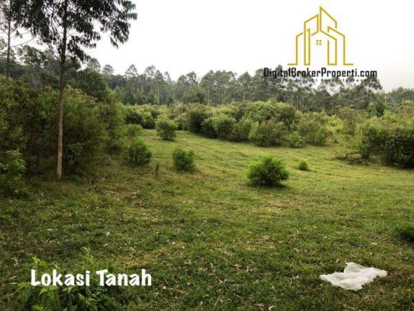 Jual Tanah Luas dan Asri di Parompong Bandung Utara
